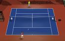 網球大師賽遊戲 / 網球大師賽 Game