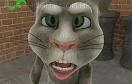 會說話的湯姆貓遊戲 / 會說話的湯姆貓 Game