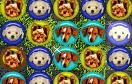 可愛狗狗對對碰遊戲 / Cute Puppy Match Game