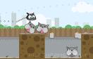 瘋狂的小貓遊戲 / 瘋狂的小貓 Game