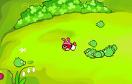 保護憤怒小鳥蛋無敵版遊戲 / 保護憤怒小鳥蛋無敵版 Game
