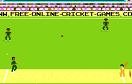 像素板球大挑戰遊戲 / 像素板球大挑戰 Game
